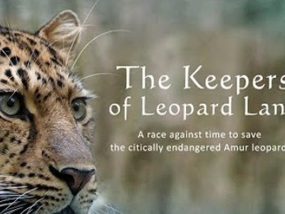 The Keepers Of Leopard Land. 4-я серия